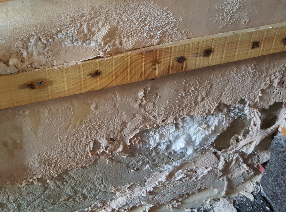 damp interna plasters at wall to floor junction